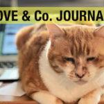 【LOVE&Co. JOURNAL】チャトランの旅立ち