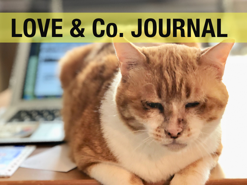 LOVE&Co. JOURNAL