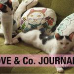 【LOVE&Co. JOURNAL】保護猫たち(ラブコCATS)の活躍とTULSI TEA