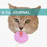 【LOVE & Co. JOURNAL】保護猫ブログ おかえりハンサム!