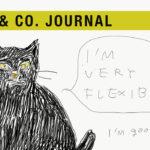 【LOVE&Co. JOURNAL】ご縁ゲットの保護猫たちとファミリーの絆