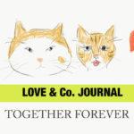 【LOVE & Co. JOURNAL】めでたい出来事いろいろ