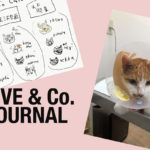 【LOVE & Co. JOURNAL】ラブコCATSの魅力を伝える新企画とコロネの入院