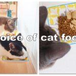 もう迷わない、愛猫から教わる愛猫のためのキャットフード選び:フードのラベルの読み方編