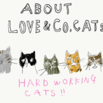 ラブコCATSについてのページを掲載しました